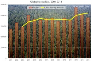 The countries of the Congo Basin, including the Democratic Republic of the Congo,Republic of Congo, Cameroon, Central African Republic and Gabon have also seen tree cover loss climb rapidly due to palm oil expansion, timber extraction and small-scale agriculture. Infograpic prepared by Mongobay.