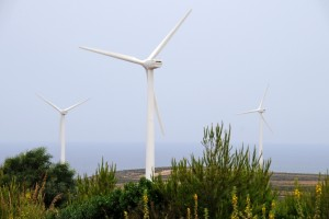 Wind turbine farm provide cleaner source of energy. Photo World Bank