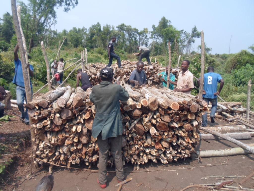Charbonniers du plateau des Batékés en plein travail de  carbonisation améliorée - Photo/SNV