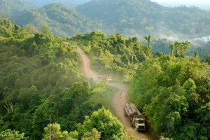 International efforts to help developing countries decrease deforestation rates must balance carbon reduction and development goals and strive to formulate clear, coherent models of change.