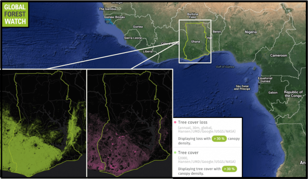 Ghana's relatively dense forests are found primarily in the southern part of the country, and are under threat from logging, agriculture, and fire. Global Forest Watch shows Ghana's tree cover declined nearly 9 percent from 2001 through 2014, and previous research indicates only around 20 percent of the country's forests remain today.