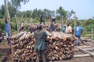 Charbonniers du plateau des Batékés en plein travail de  carbonisation améliorée - Photo SNV