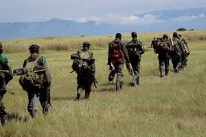 On March 2016, two rangers working in the Virunga National Park in the East of the Democratic Republic of Congo (DRC) were killed purportedly by the Mai-Mai militia.