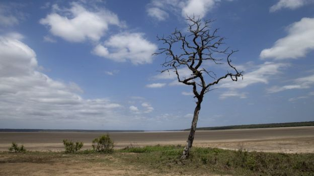South Africa says its drought is the worst in a century