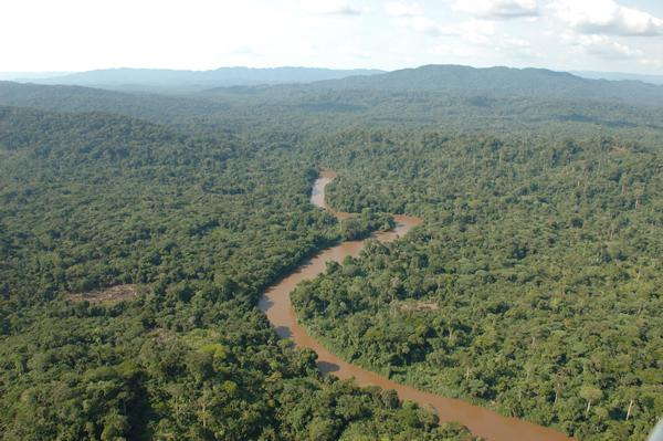 The Congo Basin is therefore at a critical juncture. The question, therefore, becomes can businesses sustainably manage palm oil in an ecologically fragile region as the Congo Basin?