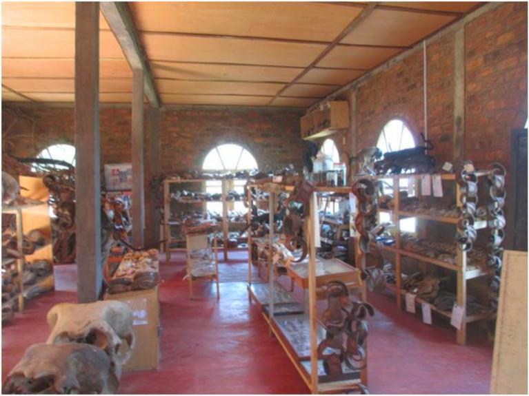Salle d'exposition avec plus de 200 collections-1