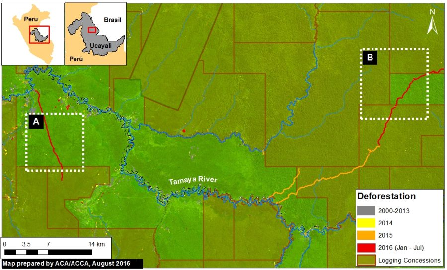 MAAP researchers recently deteted new logging roads in eastern Peru. Image courtesy of MAAP, with data from UMD/GLAD, Hansen/UMD/Google/USGS/NASA, MINAGRI