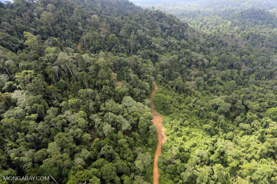 Aerial view of heavily logged rainforest in Sabah, one of the two Malaysian states on the island of Borneo. Photo by Rhett Butler.