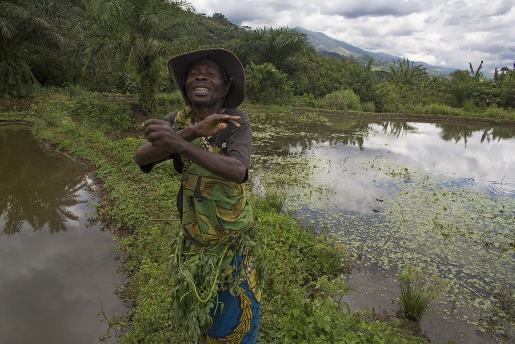 Ce projet quinquennal aura le double objectif de stimuler le développement économique dans des zones qui en ont bien besoin et aussi de limiter les impacts sur l'environnement. Photo/InfoCongo
