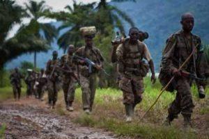 En plus, des rebelles Hutu-rwandais qui s'y sont installés à la fin du génocide rwandais (1994), les rebelles Maï-Maï occupent précisément une partie des territoires de Lubero et de Rutshuru, où ils cohabitent avec les rebelles du FDLR (Forces Démocratiques pour la Libération du Rwanda)
