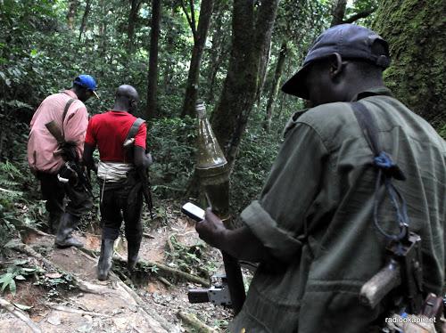 Des rebelles des FDLR se promenant dans une forêt non loin de Pingu dans l'est de la RDC