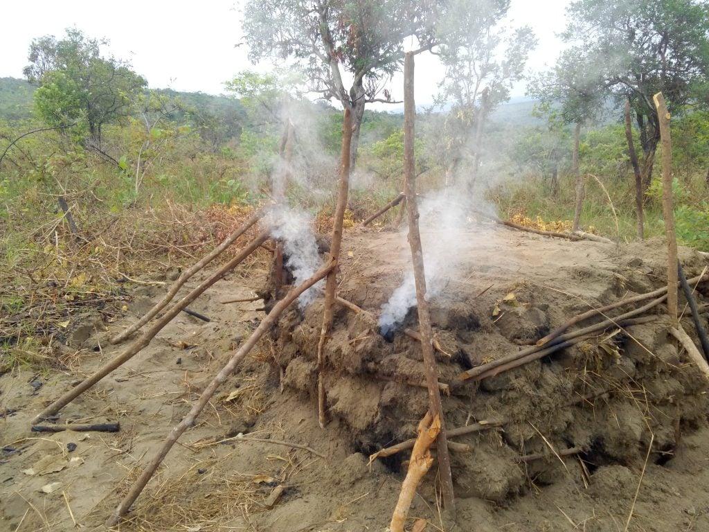 La fabrication du charbon de bois dans la forêt du Pool