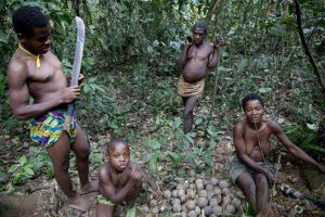 The Baka use the Cameroonian rainforest for food, medicine, and religious rituals. They are now excluded from it by force. © Selcen Kucukustel/Atlas