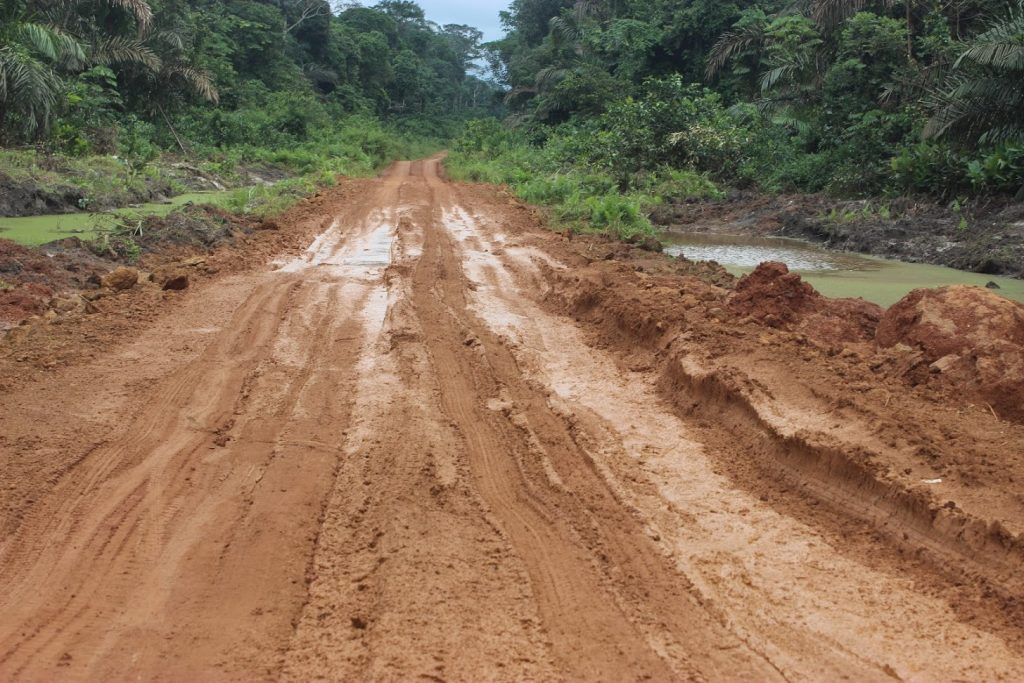 Road construction does not only promote poaching but also makes monitoring harder