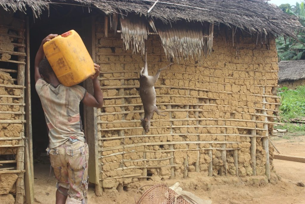 The people of Ngoyla live primarily on bush meat