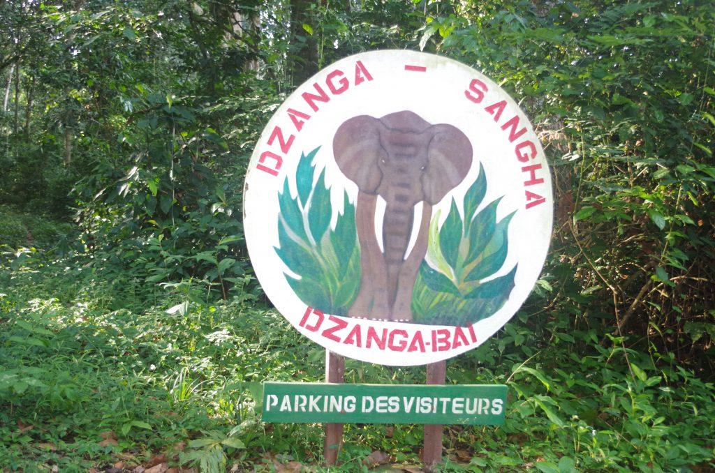 Partageant ses frontières avec le Cameroun et la République du Congo (Brazzaville), les Aires Protégées de Dzanga-Sangha sont parties intégrantes du Tri-National de la Sangha, l'un des plus importants sites de conservation transfrontalière dans le Bassin du Congo.
