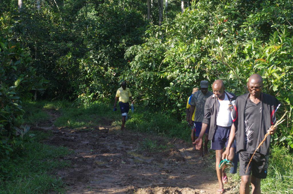Selon le constat fait sur place, la population s'implique dans la protection des espèces forestières et fauniques.