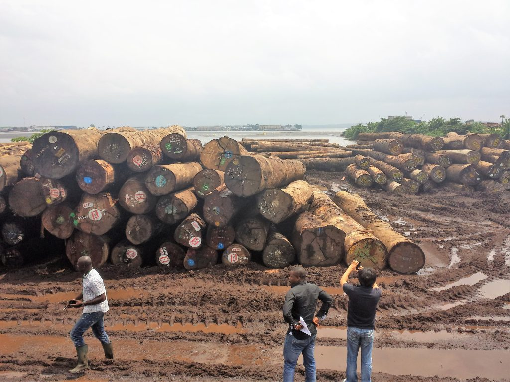 Logs at Douala port waiting to be shipped abroad. Photo Credit: Nforngwa/Africa Assignments