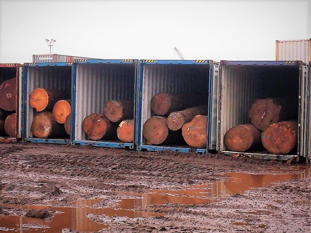 Logs at a depot at Cameroon's port city of Douala waiting to be shipped out of the country. Photo credit: Nforngwa/Africa Assignments