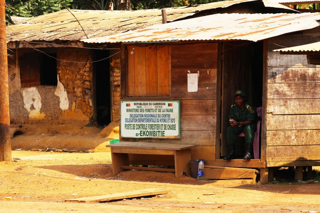 A forestry and wildlife control post in southern Cameroon. Photo credit: Nforngwa/Africa Assignments
