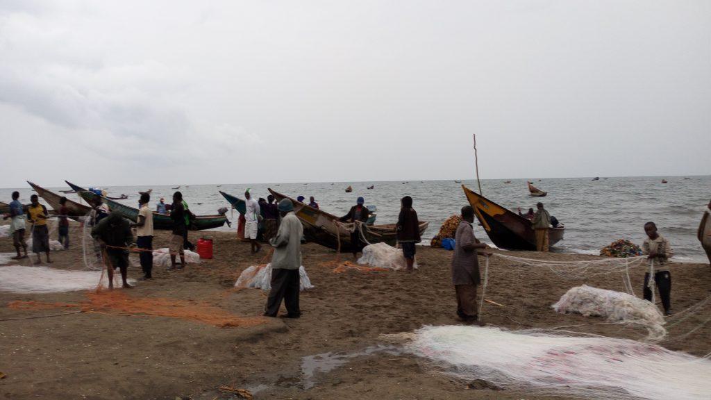 Des fils des peches qui vont au-dela du nombre exige par des normes congolaises