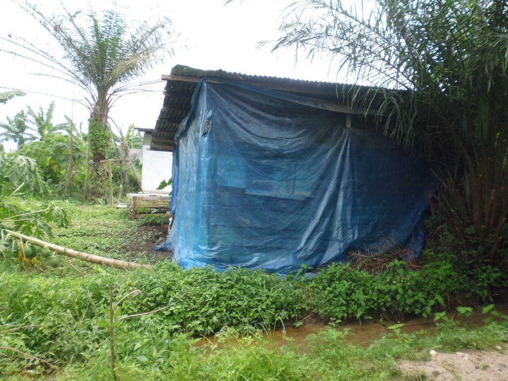 Une maison d'habitation dans le Bois des singes