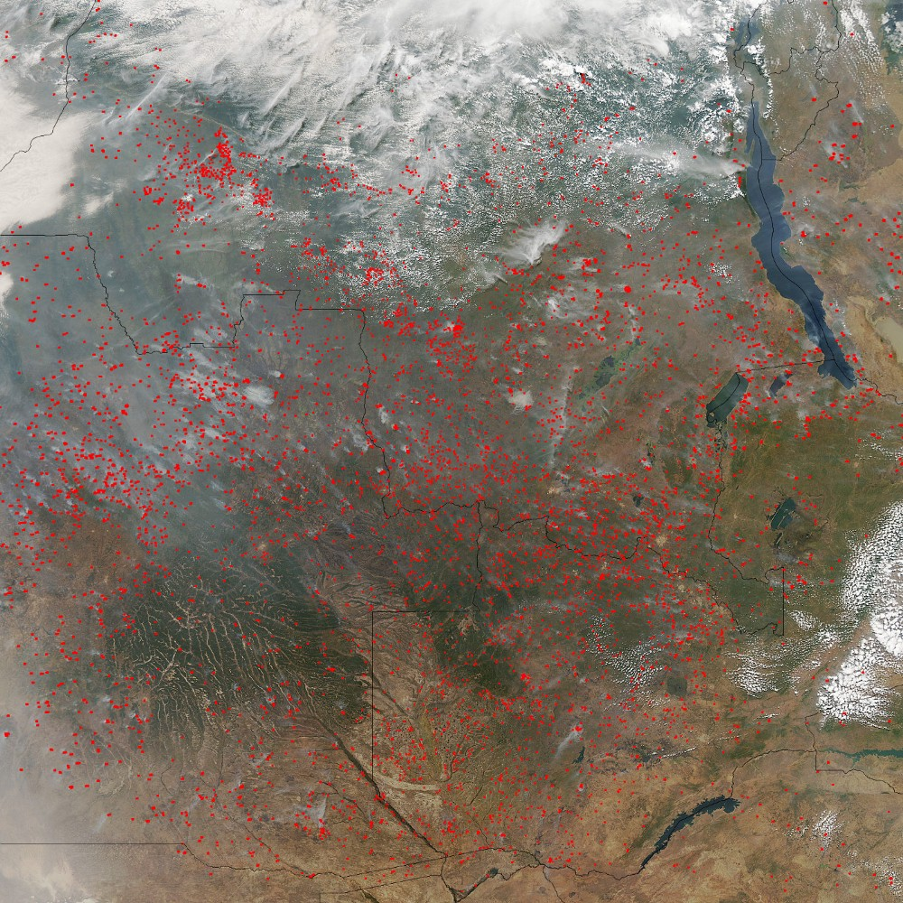 In this MODIS image of Central Africa's dry season, thousands of fires (marked by red dots) burn across Angola, Zambia and the DRC. Image: NASA MODIS Rapid Response