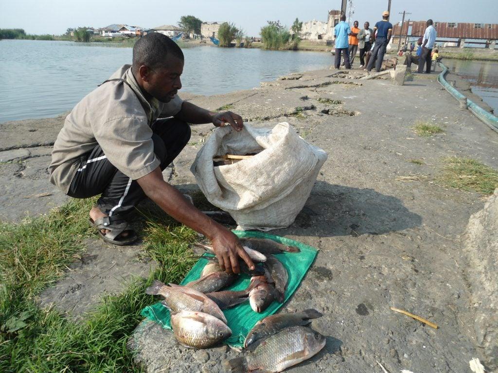 Un pêcheur de Vitshumbi, revenant du lac Edouard avec ses quelques dizaines de poissons. Par Joseph Tsongo