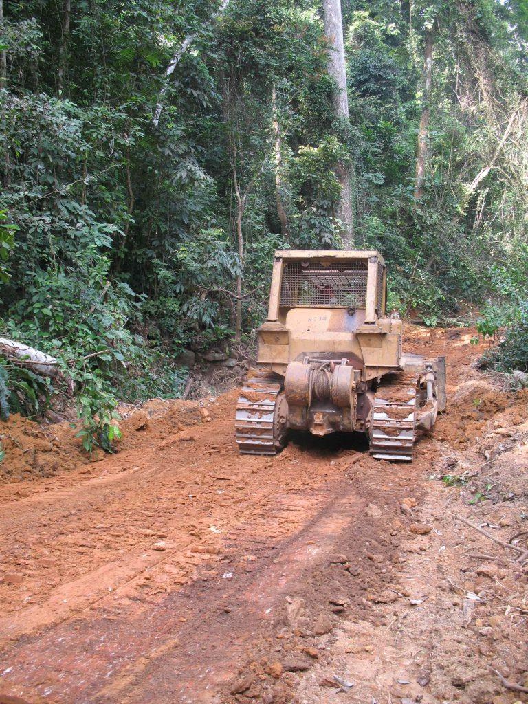 Terrassement de la route au sein d'une unité forestière d'aménagement pour le transport des billes de bois