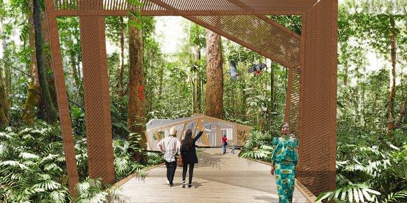L'arboretum Raponda-Walker à Libreville