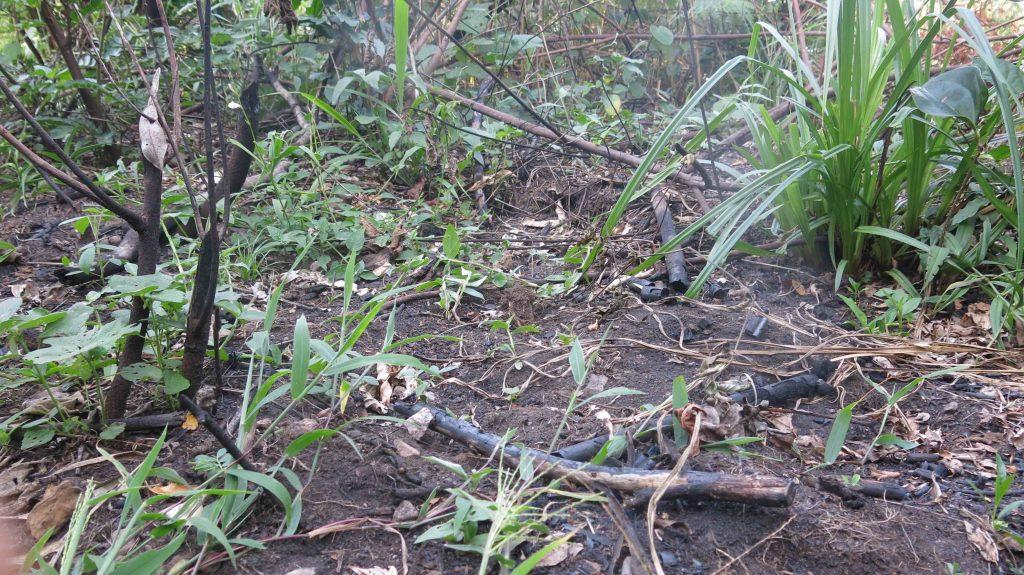 Indice de feu de brousse dans la réserve