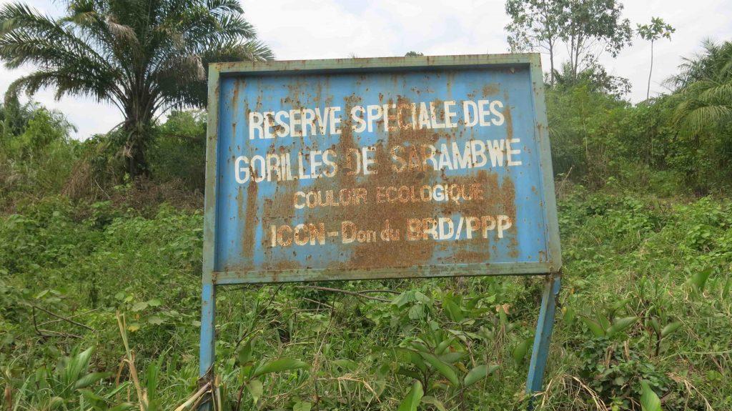 La réserve de Sarambwe est à cheval du parc national des Virunga
