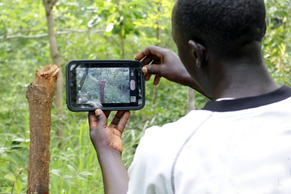 In the Congo Basin Forest region deforestation often occurs in remote areas far from view, making monitoring and protecting these places difficult even for those working on the ground. Photo credit/Jane Goodall Institute