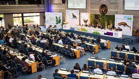 Plus de 4 000 chefs d'État, ministres, chefs d'entreprise, représentants de l'ONU, représentants de la société civile, activistes et célébrités se sont réunis du 4 au 6 décembre, à Nairobi, capitale du Kenya