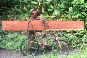 Transport de bois scié en RDC. Les communautés locales sont les principales bénéficiaires de l'exploitation forestière et du sciage de bois artisanaux dans le pays, à hauteur de 50 millions de dollars par an. Photo: Pitchou Tscimpanga/CIFOR