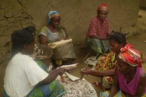Après récolte, les femmes travaillent le manioc dans un village de la province de Mai-Ndombe, en RDC. Photo/CFLEDD