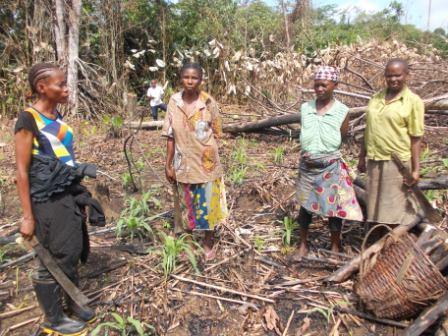 Pratique de l'agriculture améliorée par les femmes autochtones de la province de l'Equateur. Photo/CFLEDD