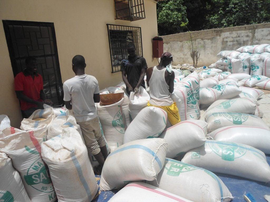 Le sac de 100 kg de sorgho est passé de 14 000 F CFA à 19 000 F CFA pendant les périodes de récolte. Photo/InfoCongo