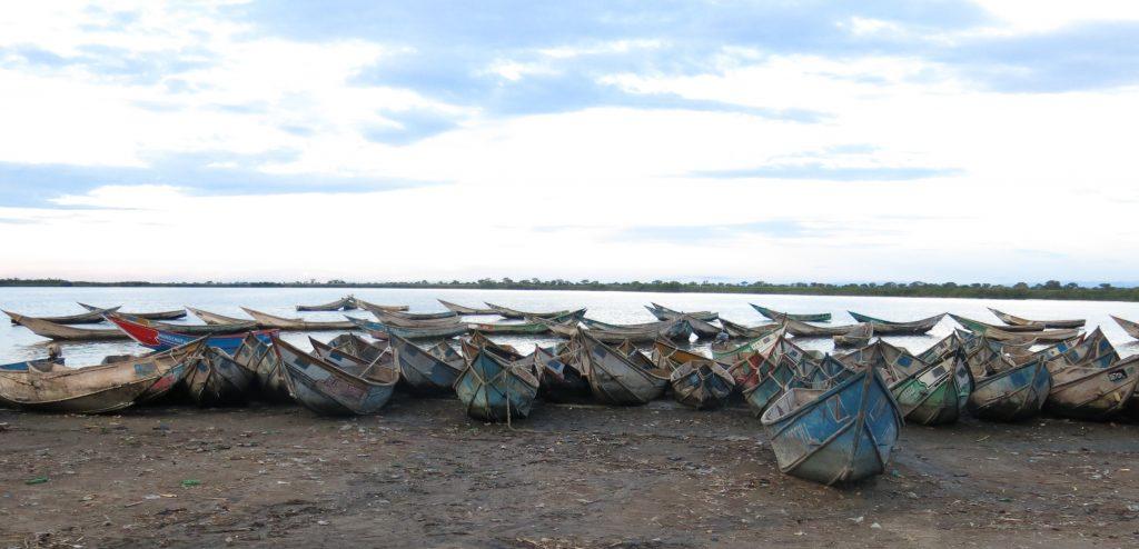 Exploitation du pétrole au Virunga : l'écosystème du lac Edouard et des moyens de subsistance des milliers de familles dans la région pourraient être menacés par d'éventuelles contaminations. Photo/InfoCongo