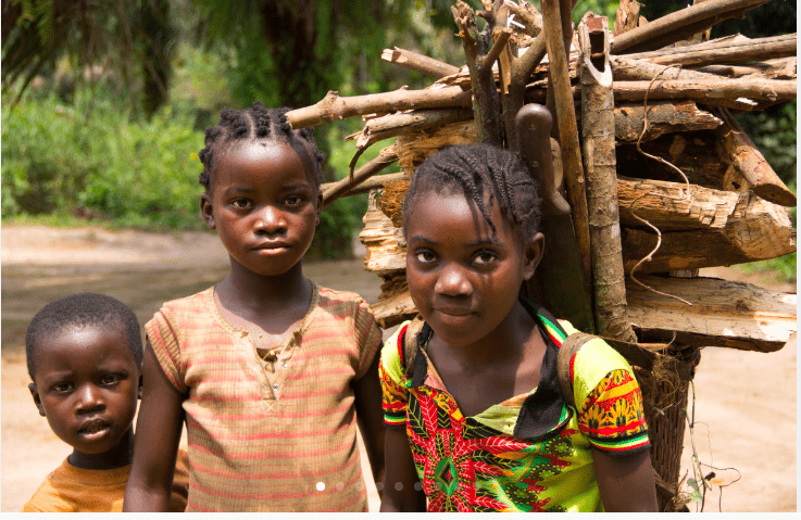 Children collect fuelwood in Mpaha, DRC. In a country with crumbling infrastructure and a limited power grid, trees provide the main source of cooking fuel for millions of people. (Photo by Molly Bergen/WCS, WWF, WRI)