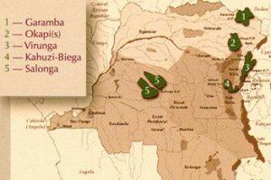 Les patrimoines mondiaux de l'UNESCO en RDC dont les Virunga et la Salonga