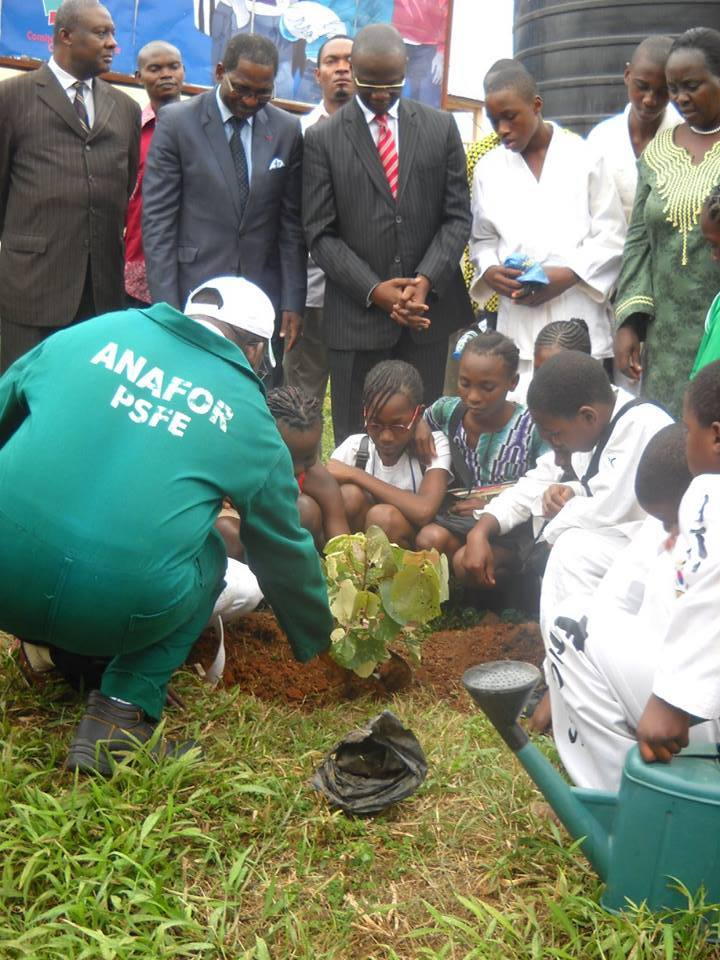 The new initiative involves tree planting in vulnerable areas and the creation of recreational parks in major cities. It is expected that these efforts will result in reducing deforestation, floods, drought, and water shortage. Photo/InfoCongo