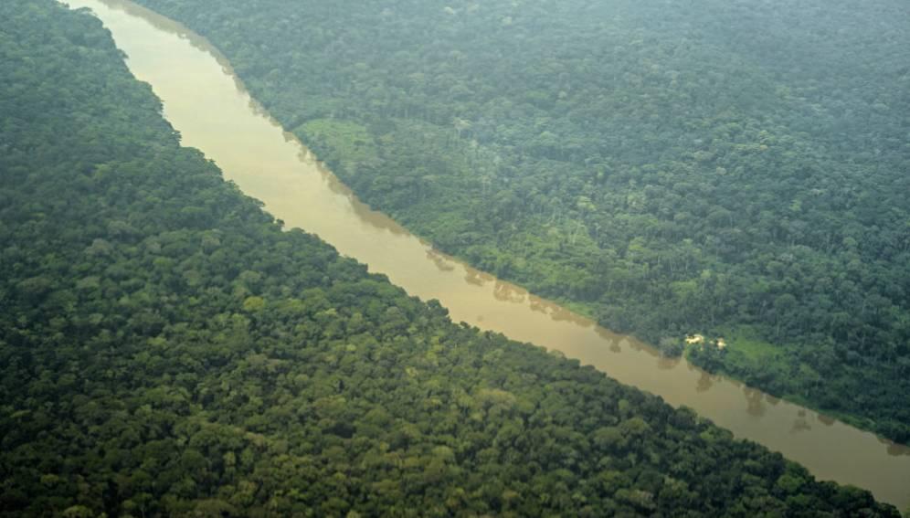 Un rapport évalue les liens entre les forêts, l'eau, les personnes et le changement climatique. Par Scidev