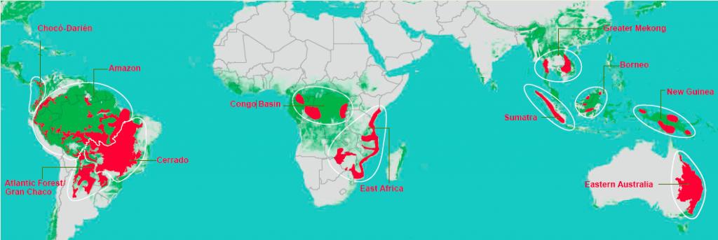 Les pressions les plus courantes à l'origine de la déforestation et de la dégradation sévère des forêts sont l'agriculture à petite et grande échelle; l'exploitation forestière non durable; exploitation minière; les projets d'infrastructure; et l'augmentation de l'incidence et de l'intensité des incendies.