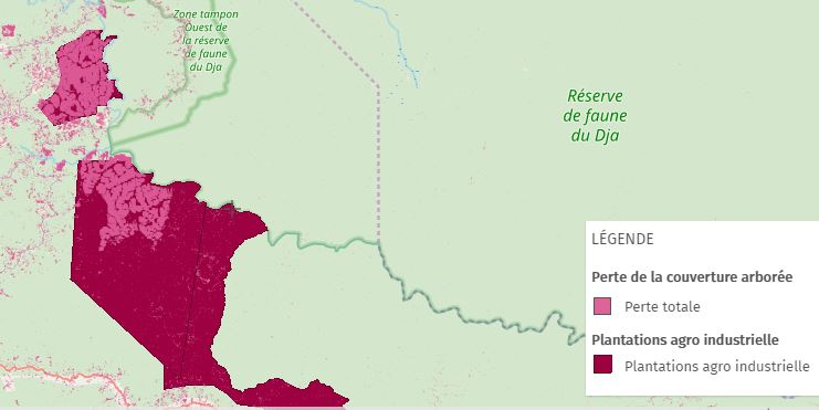 Aperçu de la Perte du couvert forestier dans la zone de SUDCAM en 2018