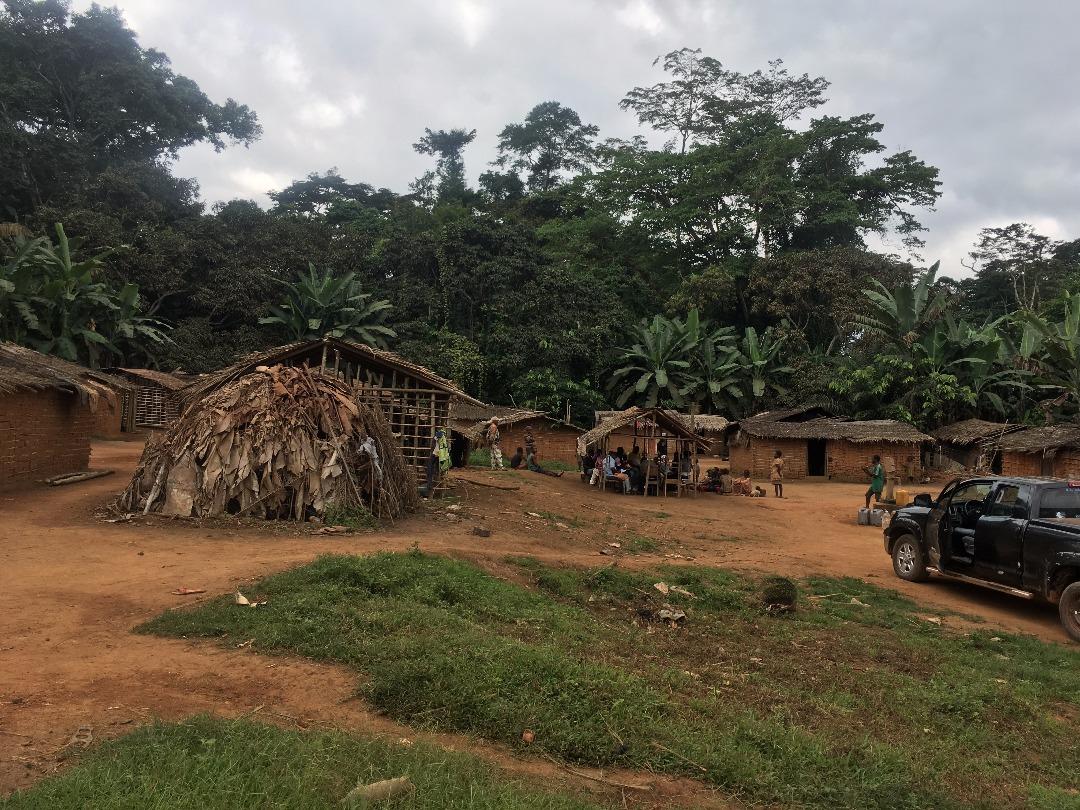 Un campement de peuples autochtones dans la plantation