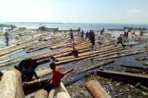 Grumes en RDC